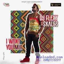 DJ Flexy - I Want You Mix ft. Skales